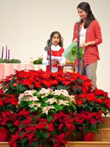 Image of an adult and child viewing a sea of Poinsettia's at Northlake UU